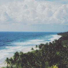 Pedaço do Paraíso. Boipeba é uma ilha linda quase intocada. Sua vila é pequena e deliciosamente singela. Mas sua beleza natural é exuberante. #PeloMundoComVc  #PeloMundo #TopDestinos #DestinosdeViagem #BlogdeViagem #ViagensPeloMundo #ViagensIncriveis #Wanderluster #Viagem #Traveltips #DicasdeViagem #BlogMochilando #RepostBrasil  #mtur #Bahia #Salvador #VisiteBahia #viagemeturismo #ninja_loira #Cairu #Boipeba #Cairu #VisiteBoipeba