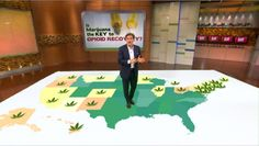 Dr. Oz Looks at Medical Marijuana as a Potential Cure for Opioid Addiction 10-23-2016