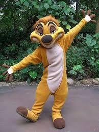 Image result for how to make a timon costume