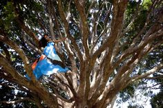 Yoga in the tree Location - Botanical gardens