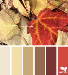 Wie im Herbst das Laub - so eine Farbenpracht vermittelt der Herbst - Farbtyp