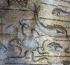 Aquileia, Italy - another detail of the 4th century CE mosaic - sea life that recalls the Iktus (fish) acronym (Jesus Christ Son of God Saviour)