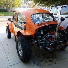 1969 volkswagen baja bug