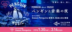 すみだ水族館「ペンギンmusic」 Japan Design, Ad Design, Graphic Design, Web Banner Design, Travel Cards, Article Design, Sale Banner, Web Design Inspiration, Penguin