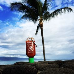 A little spice from paradise. Sent to us from Maui, HI.