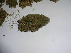 30 september, the first dry bud after 2 weeks of drying