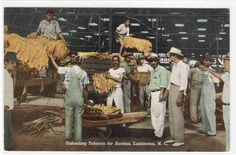 Unloading Tobacco for Auction Lumberton North Carolina 1953 Postcard | eBay