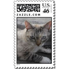 Kitty Cat Postage Stamp Click twice to purchase
