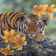 "Google Image Result for http://www.lauraregan.com/big_cats_gallery/tiger_lily_lrg.jpg  Reminds me of a book that I used to read to my kids ""Tiger Lily"""