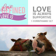 1 Corinthians 13:7 ~ This horse makes me smile!