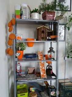 Idée cage rat. DIY. serre IKEA revisitée en cage