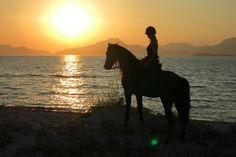 #horseriding #kos # saltlakestables