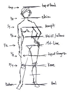 Drawing tips for the human figure.