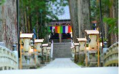 Koyasan, a world heritage in Japan 旅行サイトで絶賛される高野山、土産話ができる巡り方 | CAMPANELLA [カンパネラ]ビジネスパーソンにひらめきの鐘を