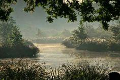 Het is echt stil … je hoort alleen het gekwetter en gefluit van vogels …  Harry Lette uit Enschede komt graag in een heerlijk rustige en natuurrijke omgeving. In de vroege ochtend is hij regelmatig in Het Witte Veen, een natuurgebied bij Haaksbergen. Vorige week maakte hij daar deze mooie foto op zijn favoriete plekje temidden van prachtige natuur.