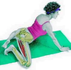 So what kind of muscles do you stretch when you do yoga? Look at these stretching exercises with pictures do find out - Vicky Tomin is a Yoga exercise Hata Yoga, Yoga Fitness, Health Fitness, Muscle Stretches, Yoga Anatomy, Stretching Exercises, Kundalini Yoga, Stay Young, How To Do Yoga