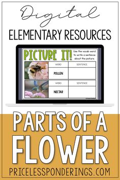 Take the stress out of planning your science class with these digital activities! your students will love learning about parts of a flower and pollination. Vocabulary Sentences, Word Sentences, Vocabulary Cards, Fun Writing Prompts, Sentence Writing, Cool Writing, Passage Writing, Reading Passages, Interactive Activities
