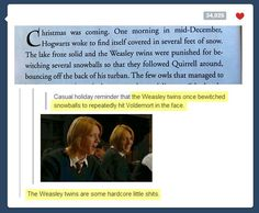 funny-Weasley-twins-snowball-Harry-Potter
