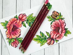 Sheena Douglass demonstrates her In Full Bloom Perfect Partners stamps and dies! Sheena Douglass, Spectrum Noir, Crafters Companion, Greeting Cards Handmade, Colored Pencils, Color Combinations, Projects To Try, Bloom, Crafty