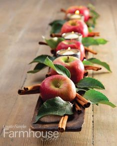 42 Cozy Diy Apple Decorations Ideas That Suitable For Autumn - I admit it. This is my favorite time of year. While friends and family are unabashed lovers of the summer, with its long sunny days, barbecues, and va. Thanksgiving Table Settings, Holiday Tables, Thanksgiving Decorations, Christmas Decorations, Holiday Decor, Christmas Garlands, Snowman Decorations, Fall Table Settings, Hosting Thanksgiving