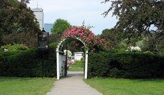 Kelleher Rose Garden Back Bay Fens Photo By Don Eunson
