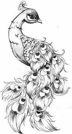 Drawing of peacock peacock sketch peacock art drawing of peacock dancing peacock drawing video Pencil Art Drawings, Bird Drawings, Art Drawings Sketches, Animal Drawings, Tattoo Drawings, Sketch Tattoo, Sketches Of Birds, Feather Tattoos, Leg Tattoos