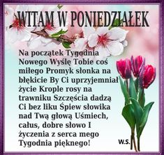 Stowa, Words, Polish, Good Morning Funny, Pictures, Horse