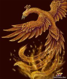 beautiful-phoenix-art-11