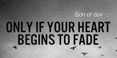 Son of Dov