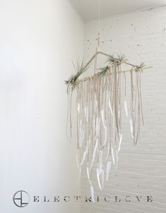 Vættir Series - Chandelier 3' in Barktan with Braided Straps, Natural Feathers and Carved Branch & Air Plants