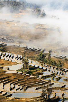 Rice Terraces China www.AsiaTranspacific.com