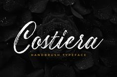 Costiera is an elegant hand-brush script with a casual style. This font has a charming, authentic and relaxed look, perfect. Script Logo, Handwritten Fonts, Branding Design, Logo Design, Graphic Design, Friends Font, Stylish Text, Text Overlay, Brush Script