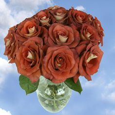 Trust us when we say that A Roses Dozen will catch your eye! GlobalRose specializes in providing divine Roses Dozen in a large variety of colors to show someone that you are thinking of them. Browse our great selection of wholesale A Dozen Roses here!