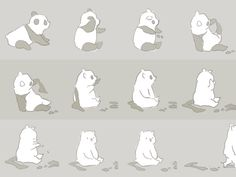 polar bear in disguise!