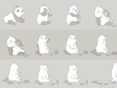 The true story of the panda bear.