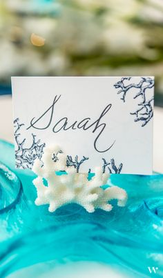 Under the Sea Wedding Stationery: Reef Coral Collection. Be Inspired and Shop the Series here: http://www.weddingstar.com/wedding-stationery/reef-coral-stationery-collection