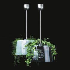 Plant lamp Lamp Design, Lighting Design, Green Lamp, Interiors Online, Scandinavian Interior Design, Plants, Decorating Ideas, Beautiful, Random