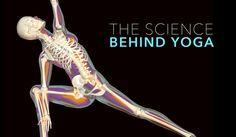 science behind yoga V6 Graded
