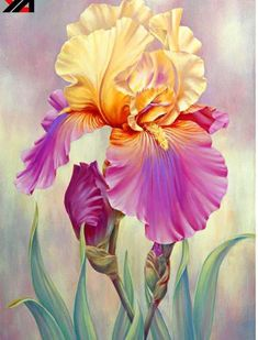 Delicate Beautiful Acrylic Painting Ideas To Try 23 Feine Acrylmalerei-Ideen Weitere Informationen Watercolor Flowers, Watercolor Paintings, Art Paintings, Flower Paintings, Painting Flowers, Iris Painting, Painting & Drawing, Painting Canvas, Arte Floral