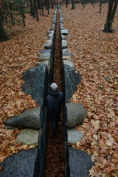 Andy Goldsworthy in Leaning into the Wind, a Magnolia Pictures release (photo courtesy of Magnolia Pictures; © Andy Goldsworthy, all rights reserved) Land Art, Art Et Nature, Nature Artwork, Landscape Art, Landscape Architecture, Landscape Design, Andy Goldsworthy Art, Art Environnemental, Art Public