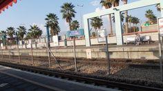Hof HaCarmel Railway station  photo  mirjam  Bruck-Cohen