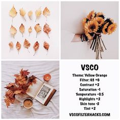 Read all of the posts by vscofilterhacks on VSCO Filter Hacks Vsco Filters Summer, Best Vsco Filters, Fotografia Vsco, Vsco Feed, Vsco Gratis, Vsco Hacks, Feeds Instagram, Instagram Feed Ideas Posts, Autumn Instagram Feed