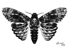 Skeleton Moth Art Print by Elizabeth Tilly | Society6