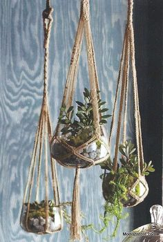 Roost Jute Hanging Planters * Next Day Shipping * – Modish Store