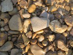 Heart shaped beach rocks