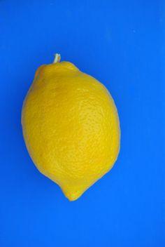Lemon Print by keesandme on Etsy