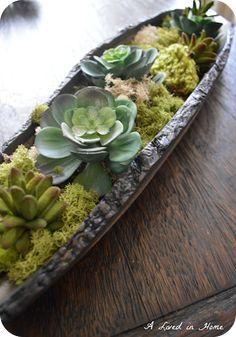 A Lived in Home: DIY Succulent Arrangement