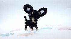 Terrier miniature Russian toy terrier Miniature pincher
