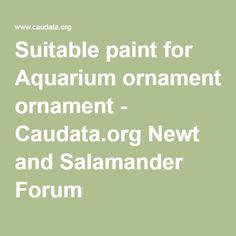 Suitable paint for Aquarium ornament - Caudata.org Newt and Salamander Forum
