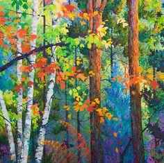Autumn Maples and Blue Spruce  - 4 ft x 4 ft Frank Balaam
